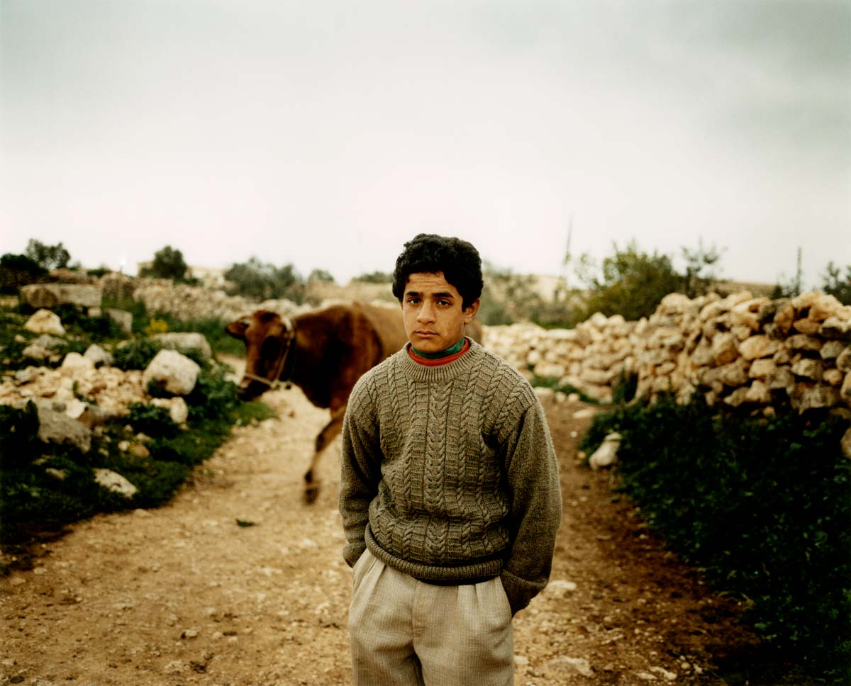 kurd-with-cow-syria